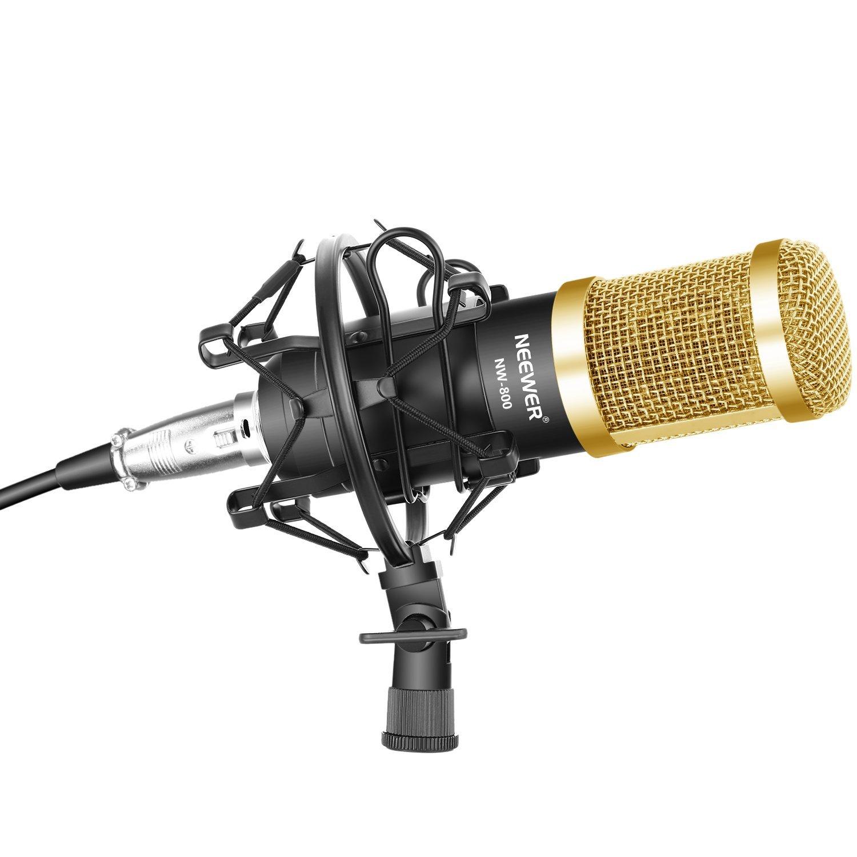 Microfonía